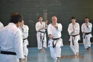 JKA ROMANIA 2014- GASSHUKU KAWASOE MASAO SENSEI