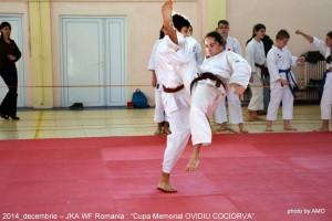 "JKA ROMANIA 2014-CUPA ,,MEMORIAL OVIDIU COCIORVA"""