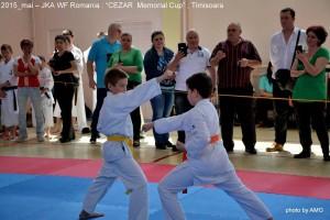 JKA ROMANIA 2015 – CAMPIONATUL NATIONAL TIMISOARA