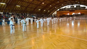 JKA GASSHUKU 2016- KAWASOE SENSEI TIMISOARA & SANNICOLAU MARE 26-28 MARTIE